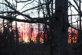 Sunset February 10 2017