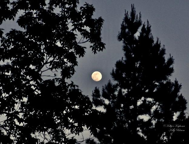 The Monday Moon