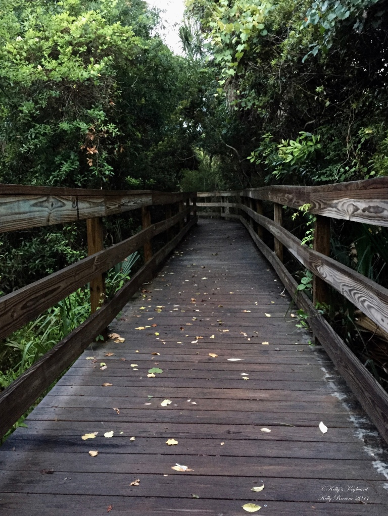 Walkway to the beach ~ Kiawah