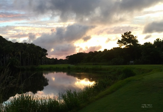 Sunrise reflection on one of the greens